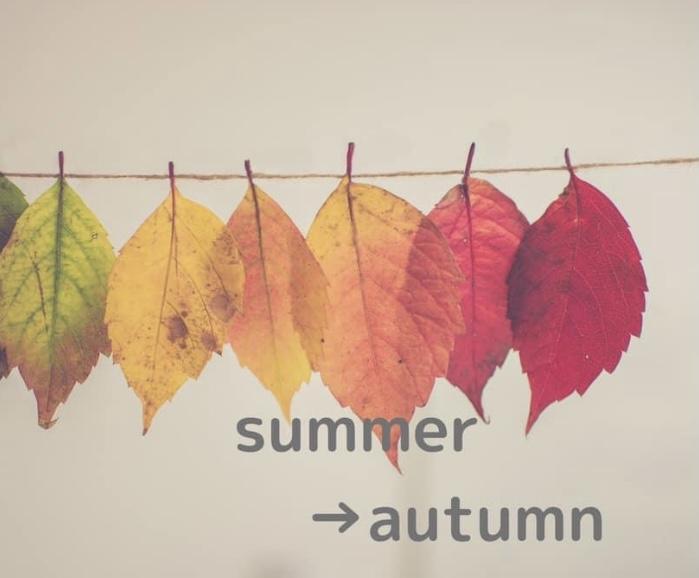 季節の変わり目